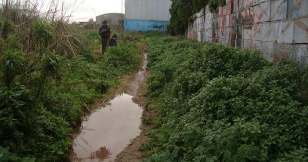 Proponen relocalizar harineras de pescado fuera del ejido urbano
