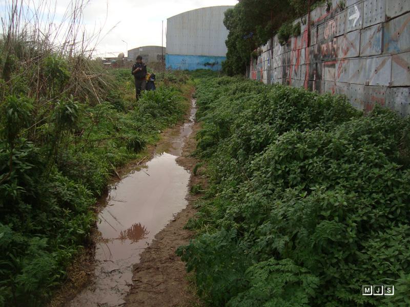 Denuncian vertidos ilegales en la reserva del Puerto