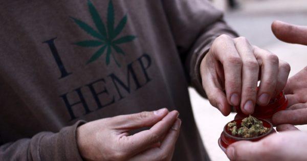 """""""Cannabis para la salud"""", entre el uso, la ley y el cultivo"""