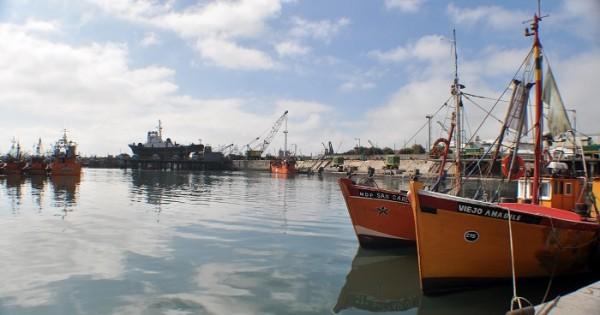 """Puerto: """"Hay empresas que tienen el 100% de los buques parados"""""""