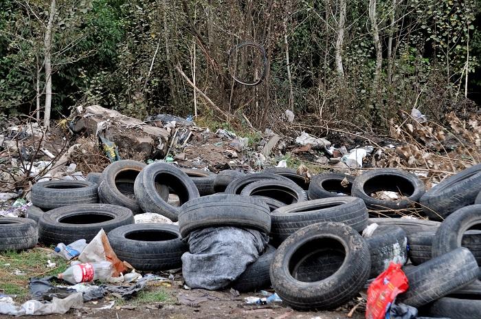 Detenciones por tirar basura: más críticas contra Arroyo