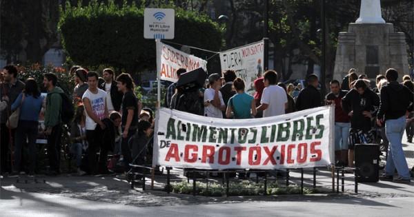 """Agroquímicos: """"Defienden un sistema que no genera beneficios"""""""
