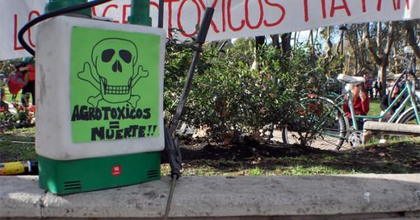 """Agroecología: """"No es una alternativa, es la única forma de producir"""""""