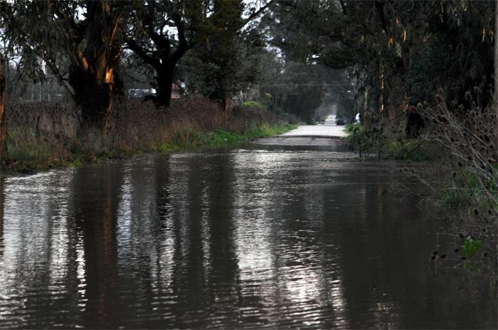 Parque Hermoso: evalúan la vuelta a casa de 42 evacuados