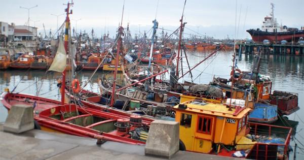 """Puerto: """"Hay un interés mutuo por desarrollar la industria"""""""