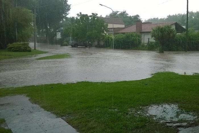 Temporal: barrios inundados, árboles caídos y dos evacuados
