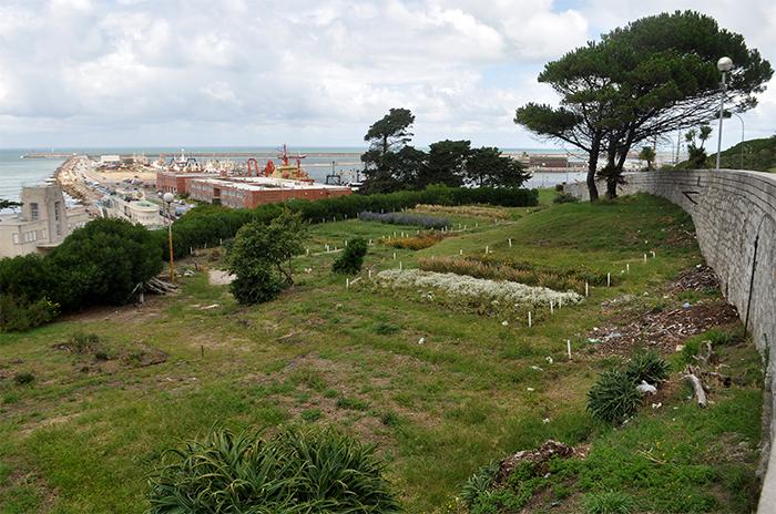 Playa grande comenz la puesta en valor del desmejorado for Vivero municipal