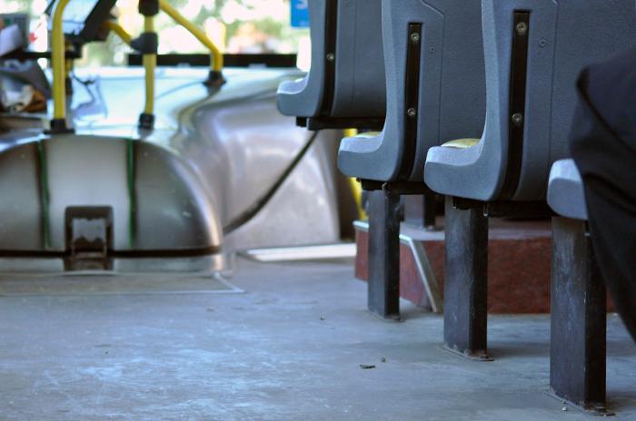 """Colectivos no suben a Kiara por usar silla de ruedas: """"Pido ayuda"""""""