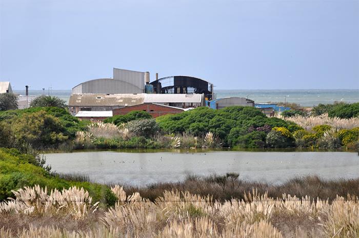 Reserva del Puerto: la ley para preservarla no se implementa