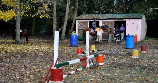 Cuarentena: otras tres actividades fueron autorizadas por decreto municipal