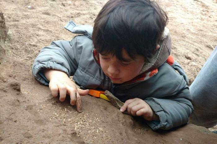 Tiene 4 años y encontró restos fósiles de más de 500.000 años