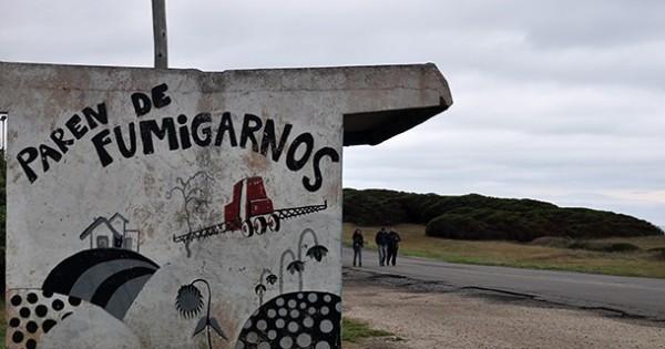 Agroquímicos: tras la resolución de Vidal, una acción ante la Corte