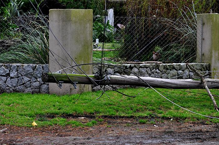A tres días del fuerte viento, unos 2 mil usuarios siguen sin luz