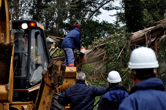 """El Bosque, después del temporal: """"Nunca se paró de trabajar"""""""