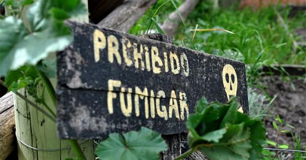 """Agroquímicos: advierten por una resolución provincial """"regresiva"""""""