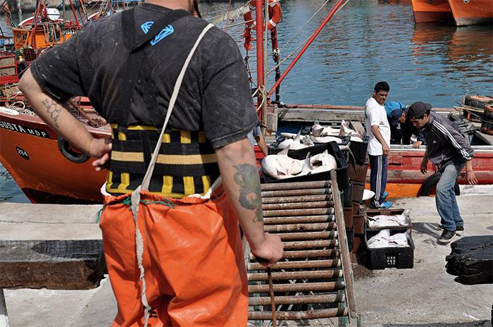 """Crisis del Puerto: """"Lo único que falta son definiciones"""""""