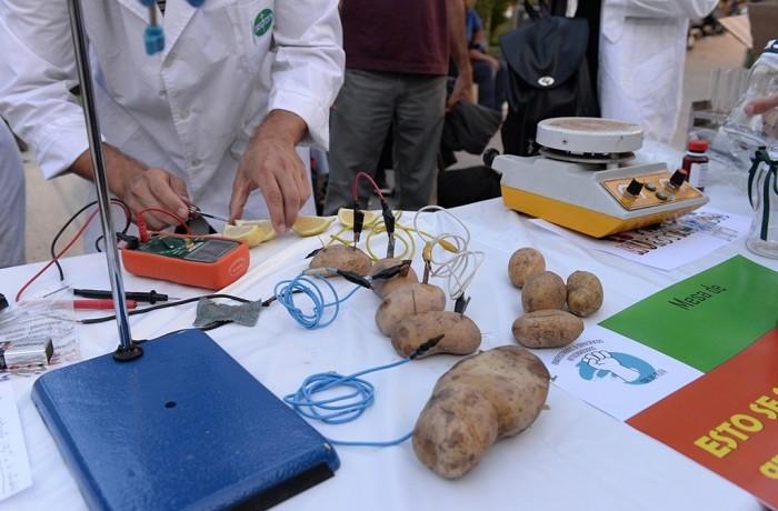 Conicet expo ciencia5