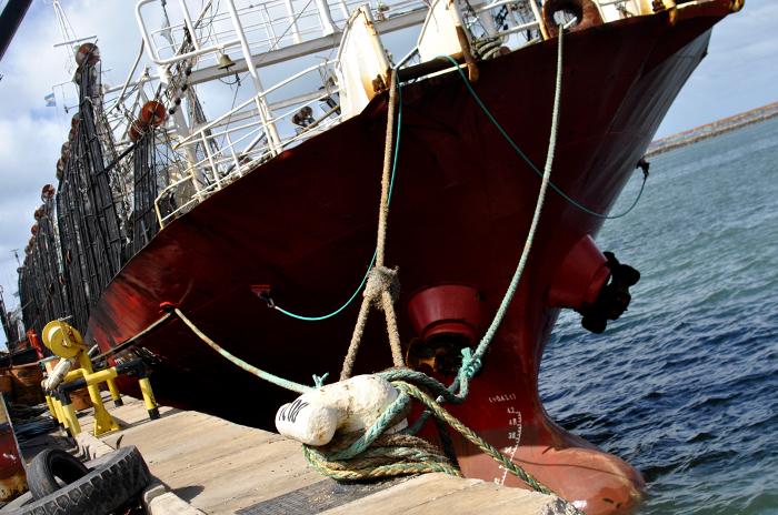 """Pesca de langostino: """"positiva"""" reunión con funcionarios provinciales"""