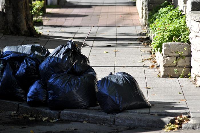 Basural: pese al paro, el Municipio garantiza la recolección