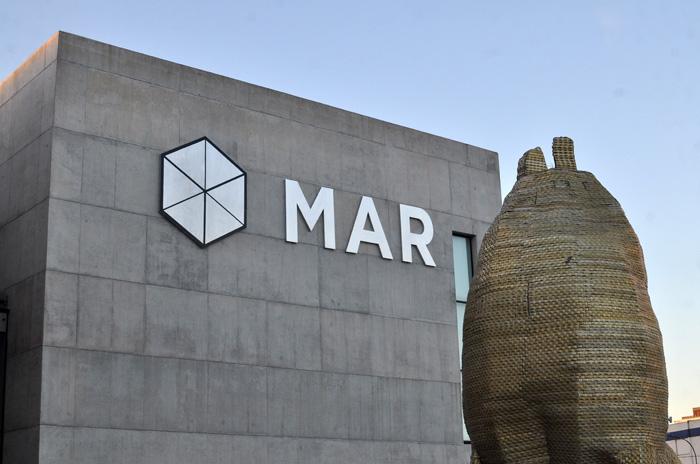 El Museo MAR y la unión entre ciencia y arte