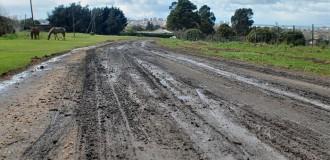 Barrio Santa Celina: la UNMdP realizará un estudio ambiental