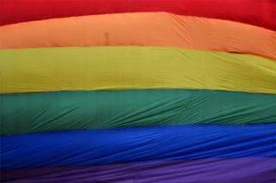 Mar del Plata también realizó un banderazo por la Ley de Cupo Laboral Travesti Trans