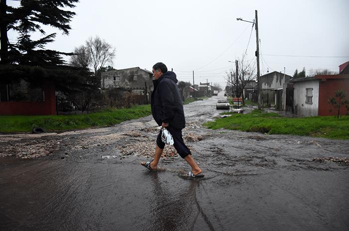 Temporal: lluvia, viento, árboles caídos y evacuados