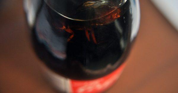"""Coca Cola, a """"juicio oral"""" por una botella con una cucaracha adentro"""