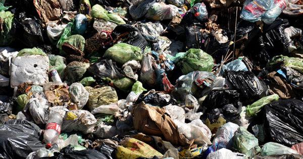 Cuánta basura se genera en Mar del Plata y qué cantidad se recicla