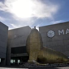 Museo MAR: cine para todos los gustos, gratis y todo el año