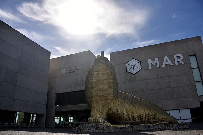 El Museo MAR renueva sus muestras para el verano 2019
