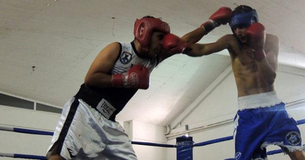 Preparan un nuevo festival de boxeo en el club Alvarado