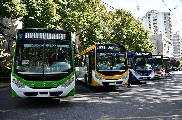 """Subsidios al transporte: """"No hay ninguna quita"""", aseguró Dietrich"""