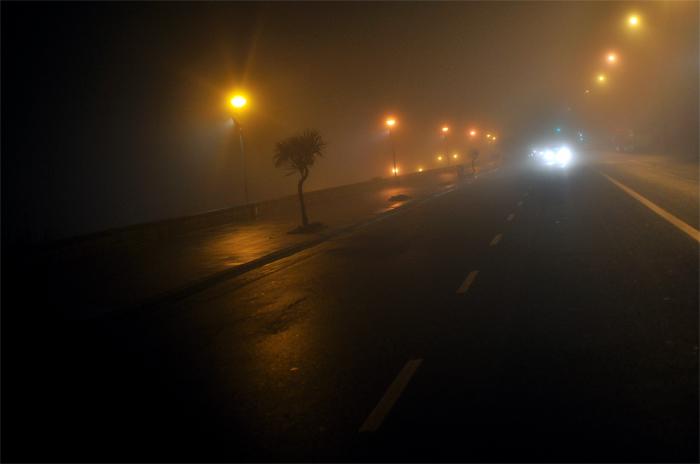 Una intensa niebla se apoderó de la noche marplatense