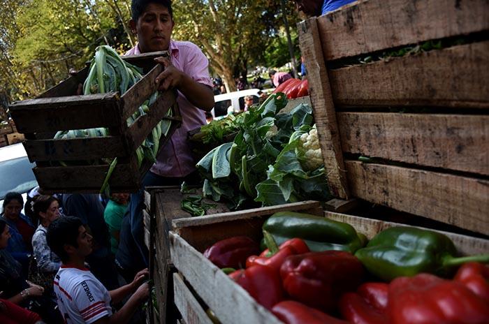 """Agroecología: alerta por despidos y """"desmantelamiento"""" del área"""