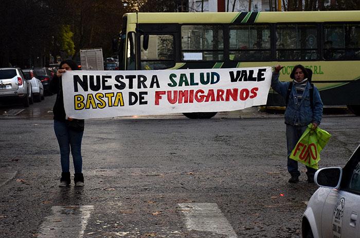 BARRIOS FUMIGADOS FELIZ U CAMET  (4)