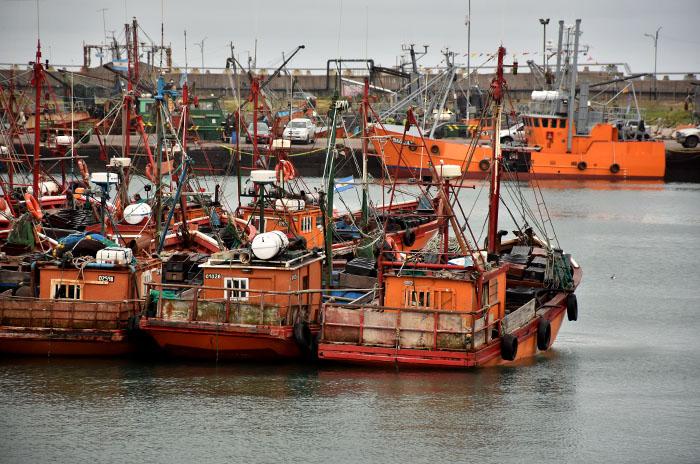 Cámaras pesqueras dicen que cumplen las medidas de seguridad