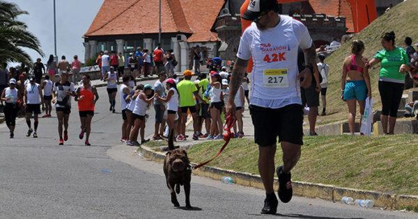 Maratón: el gobierno privatizó la organización por dos años más