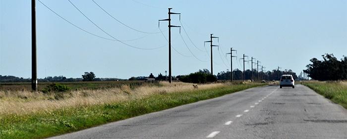 Choque frontal en Ruta 88: murió la mujer que había resultado herida