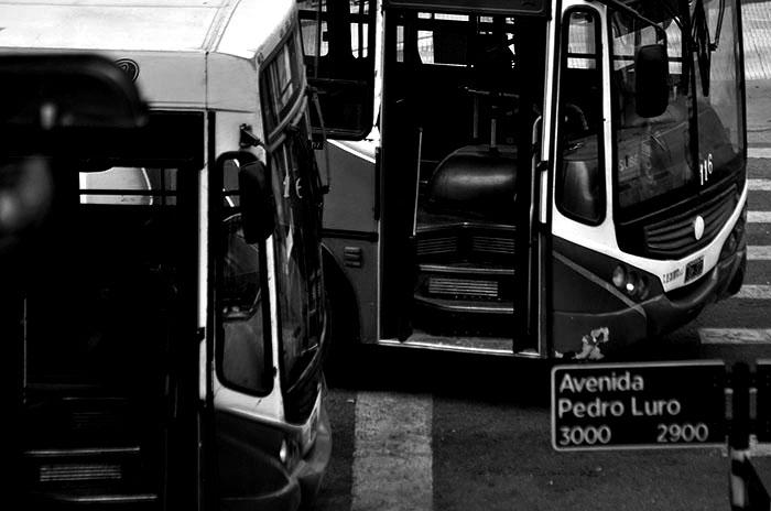 colectivo-municipalidad-