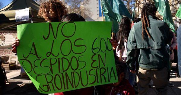 Agroindustria: despiden a ocho trabajadores de Mar del Plata