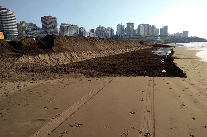 Arena Playa Grande ONG Surfrider (1)