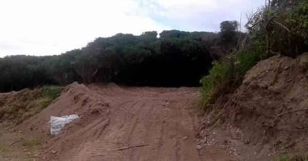 Verde mundo: vecinos denuncian deforestación en la Reserva