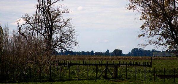 Denuncian casos de trata laboral en una quinta de Valle Hermoso