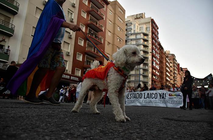MARCHA DEL ORGULLO LGBTQI  (10)