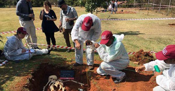 Se reinician los trabajos del Equipo Argentino de Antropología Forense