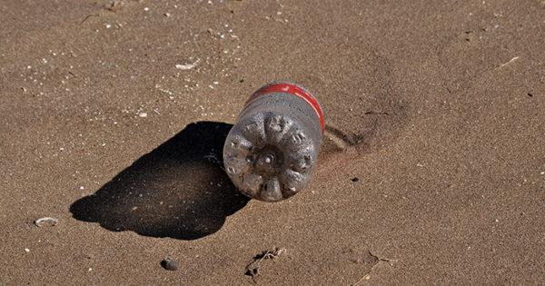Limpieza de plásticos en la Playa Popular, a cargo de Greenpeace