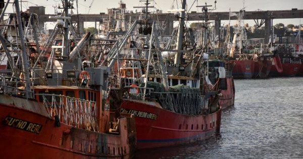 Renovación de la flota pesquera: avanza el proyecto en el Senado