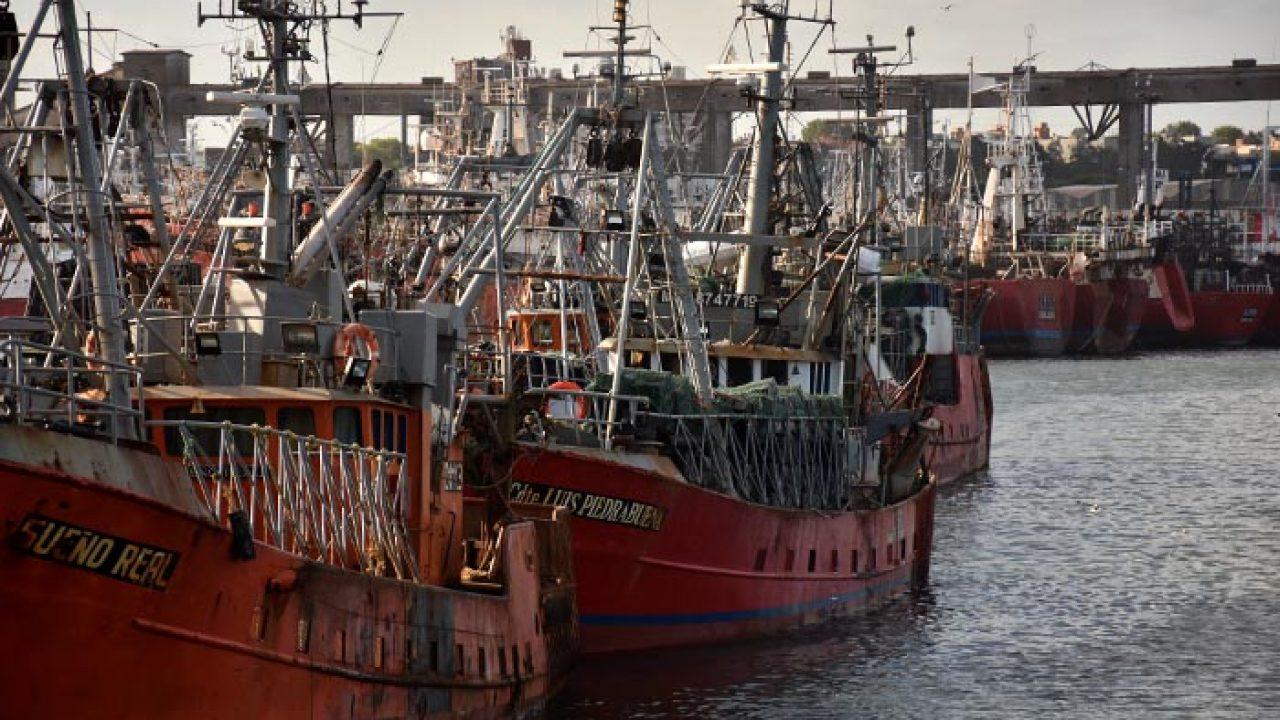 """Crisis en la pesca: """"Debemos dejar de pescar para sobrevivir"""""""