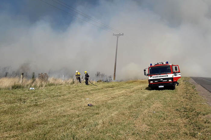 Ruta 226: bomberos controlan un importante incendio de pastizales